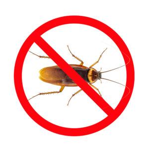 Pest Control - Roachrs